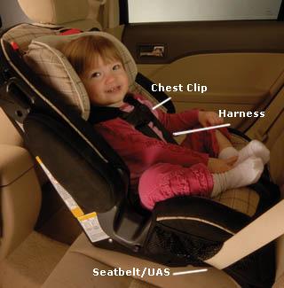 convertible child seat